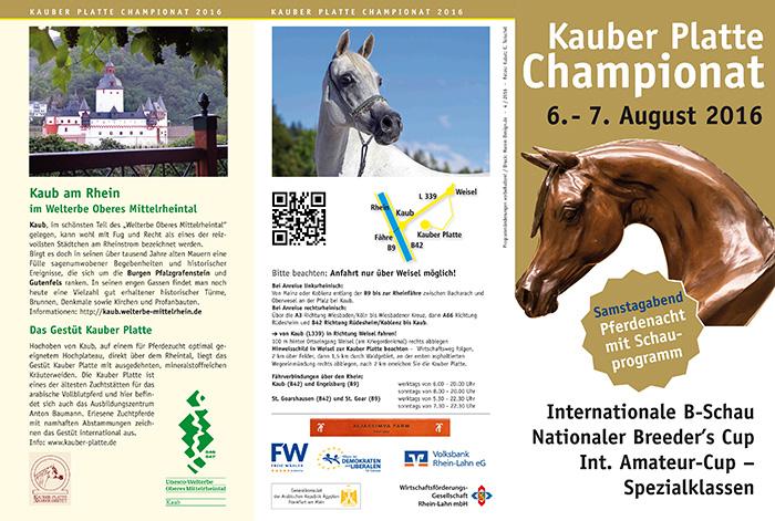 KP16-Flyer1