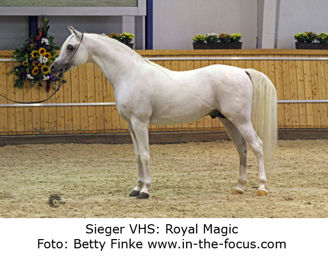Sieger-VHS-Royal-Magic